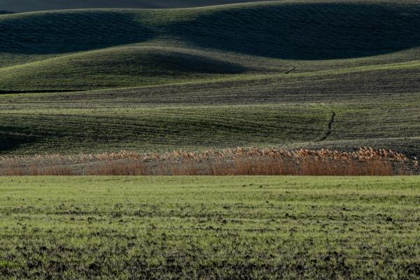 Pienza, landscape 2
